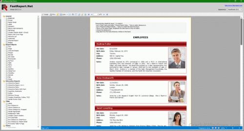 FastReport.Net 2021.2.10 Crack {Latest Version} 100% Working Free